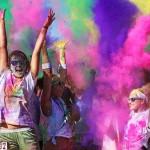 2013 Color Vibe